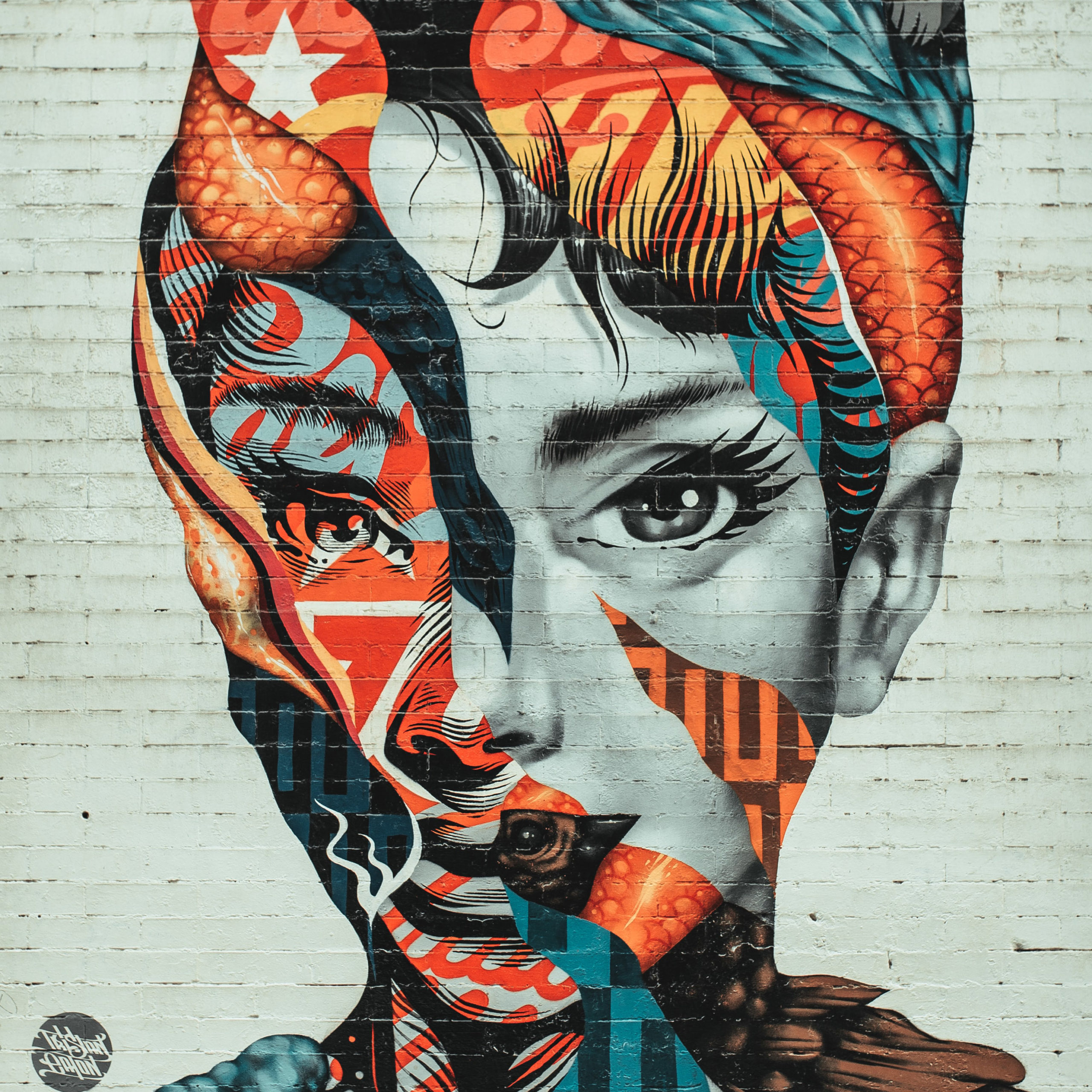Mural of A Beautiful Ethnic Woman